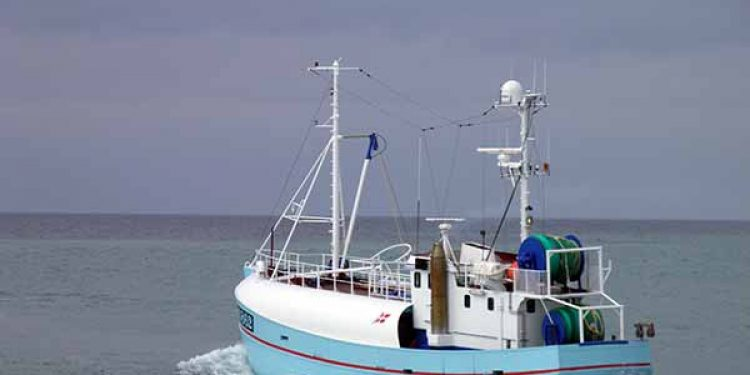 Read more about the article MSC suspenderinger i JDF-fiskeriet (Joint demersal fisheries)