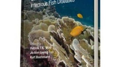 Buchmann har udgivet ny bog »Climate Change and Infectious Fish Diseases«