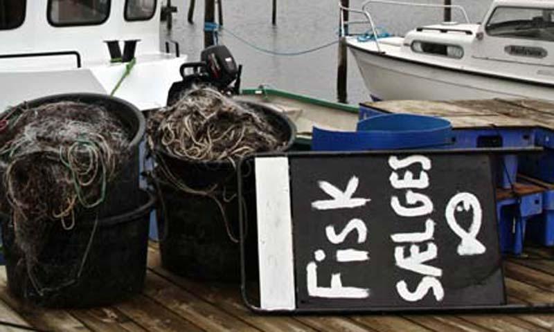 Mærke for kystfiskerfanget fisk ingen succes