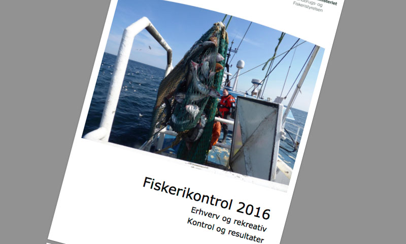 Flere lovlydige fiskere i erhvervet