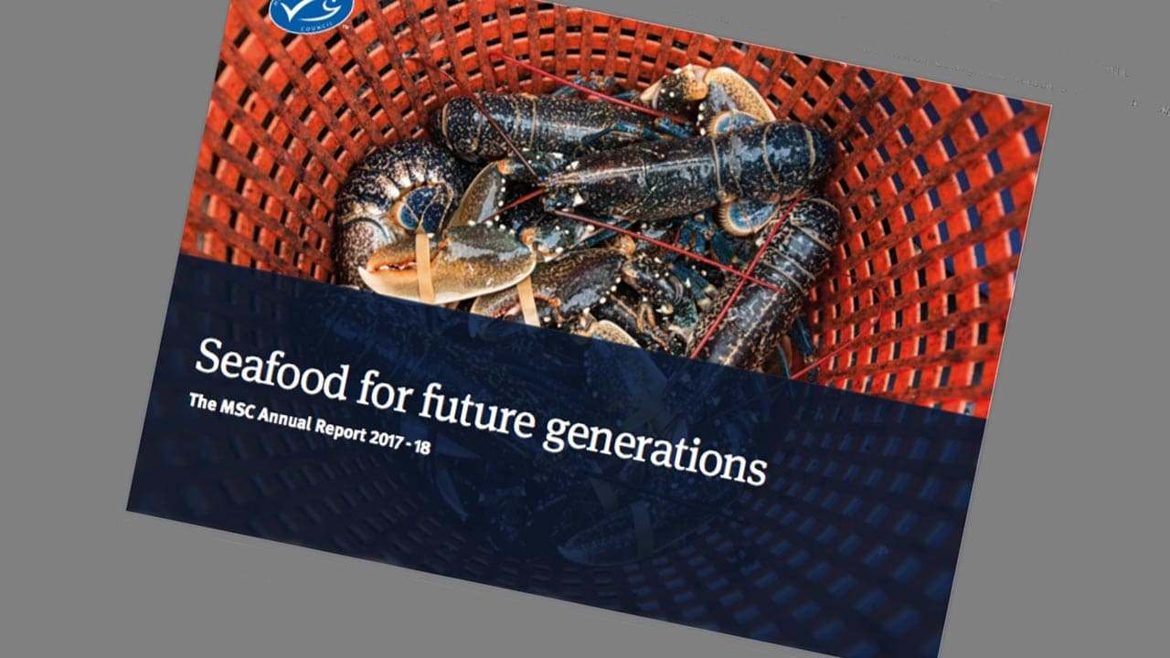MSC årlige rapport – »Seafood for future generations«