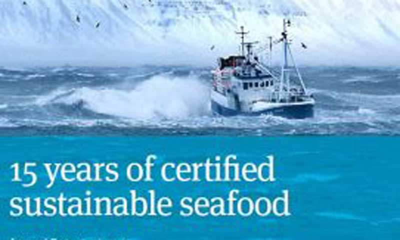 Read more about the article MSC udgiver årsrapport for 2014-15
