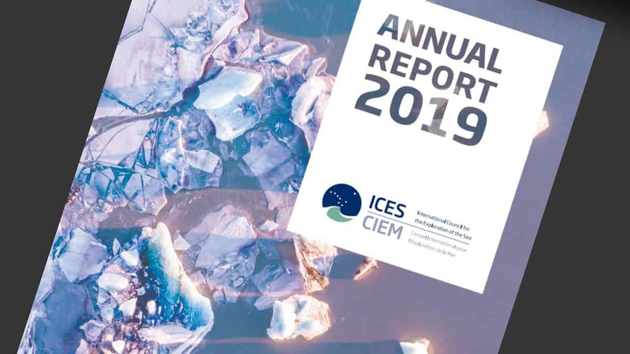 Read more about the article ICES Årsrapport 2019 er offentliggjort